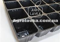 Кассеты для рассады 24 ячейки, Польша, размер кассеты 360х560мм, толщина стенки 0,55мм, фото 1