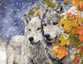 Картина по Номерам Волки зимой 40х50см Strateg