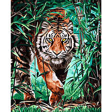 Картина по Номерам Тигр в письме 40х50см Strateg