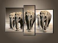 """Модульная картина """"Слоны"""" фотопечать на холсте, фото 1"""