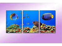 """Модульная картина """"Подводный мир"""" фотопечать на холсте, фото 1"""