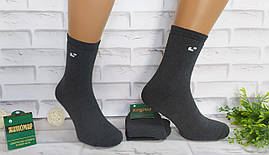 Носки мужские махровые размер 40-45 серые за 1 пару Житомир 0102