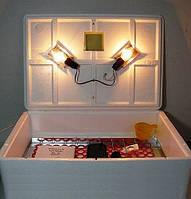 Инкубатор Наседка ИБМ-70 яиц с ручным переворотом