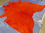 Шкура корови червоного кольору однотонна в Харкові, фото 2