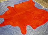 Шкура корови червоного кольору однотонна в Харкові, фото 3