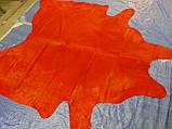 Шкура корови червоного кольору однотонна в Харкові, фото 4