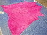 Коров'яча шкіра з фарбуванням в рожевий колір в Україні, фото 3