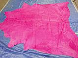 Коров'яча шкіра з фарбуванням в рожевий колір в Україні, фото 4
