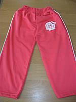Детские штанишки на байке для девочки 86-104 Турция