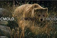 """Алмазная вышивка """"Бурый медведь"""""""