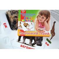 """Набор детских карточек """"Дикие животные"""", 15 шт в наборе 951284"""