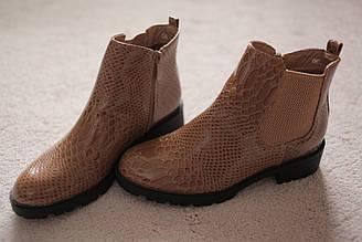 Женские ботинки бежевые на каблуке лаковые питон тиснение классика 36-41 новинка