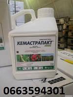 Фунгицид КЕМАСТРАПАКТ 250 SC, фото 1