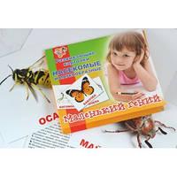 """Набор детских карточек """"Насекомые"""", 15 шт в наборе 951291"""