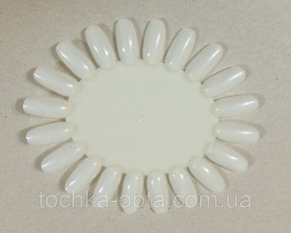 Палитра Ромашка для образцов лака Цвет Белый