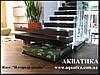 Аквариум — ступень лестницы