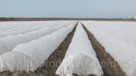 Агроволокно 23грамм/м.кв. 3,2*10 м белое (пакет)