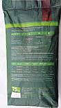 Комбікорм для бройлерів старт AgroGoldMix 5-2 (8-22 день), фото 2