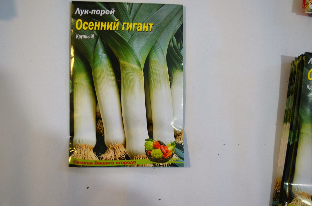Семена Лук-порей Осений гигант, фото 1