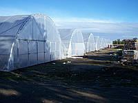 Теплицы из пленки фермерские 10х40 м