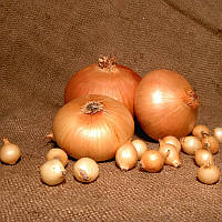 Лук-севок озимый Штутгартен Ризен 0,5 кг Broer