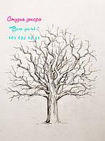 Дерево пожеланий - альтернатива книге пожеланий гостей.