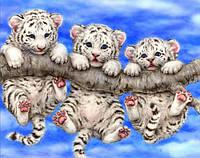 Алмазная вышивка Тигрята KLN 30*40 см (арт. FS 007)