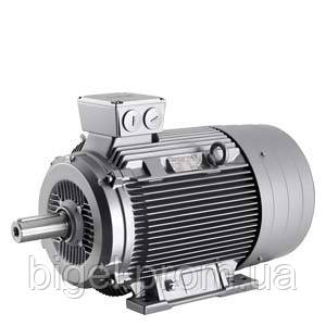 Электродвигатель 11 кВт 22 А 1LE1002-1DC42-2AA4-Z D22