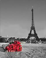 Набор алмазной мозаики Париж, Эйфелева башня KLN 40*50 см (арт. FS016)
