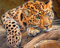 Набор алмазной вышивки на подрамнике Леопард отдыхает KLN 50 х 40 см (арт. TN559)