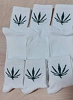 Носки 37-40 размер 6 пар высокие белые с принтом плотные хлопок 6 шт. комплект упаковка женские / мужские