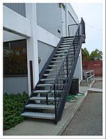 Пожарная наружная вертикальная лестница