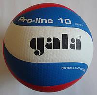 М'яч волейбольний Gala Pro-Lline 10 BV5581S, фото 1