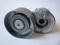 Натяжитель ремня генератора на Renault Trafic / Opel Vivaro 1,9dCi (+AC) с 2001... SNR (Франция), GA355.00