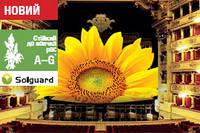 Семена подсолнечника ЭСТРАДА,  А–G*, Среднепоздний, Олии 52 %, Высокоурожайный, СИНГЕНТА