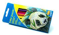 Карандаши цветные 12 цветов Kite трёхгранные K16-053