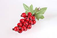 Декоративные ягоды смородины на веточке красного Польша