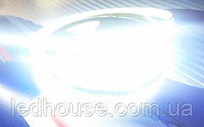 Светодиодная лента 3014-204 led мт Яркая Белая