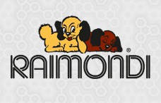 Инструмент для профессионалов RAIMONDI (Италия)