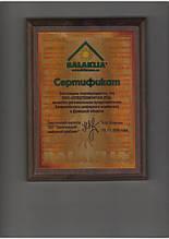 Региональный представитель_ Балаклеевский шиферный_2006