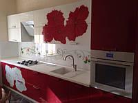 Кухня с рисунком ( суданская роза), фото 1