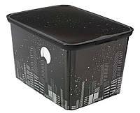 Ящик для хранения SkyLine L, Curver 213934