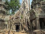 """Екскурсійний тур в Камбоджу """"Камбоджа"""" на 4 дня / 3 ночі, фото 4"""