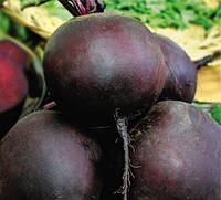 Свекла Ред сан F1 семена средне-раннего гибрида столовой свеклы темно красного цвета для кулинарии и хранения
