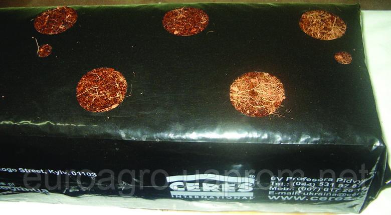 Маты кокосовые прессованые CCGB100/20-10H п,2ал, фото 2