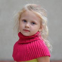 Аксессуары (шарфики, манишки, рукавички, подстилки в санки и т.д.)