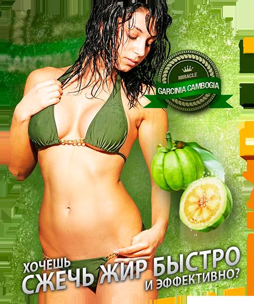 Купить в интернет магазине препараты для похудения изображение 2