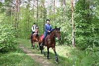 Увлекательная прогулка по лесу (шагом)