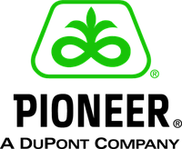 Семена подсолнечника Пионер / Pioneer