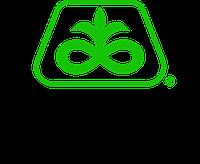 Семена кукурузы Пионер / Pioneer